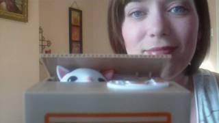 Itazura Coin Bank unboxing (cat version)