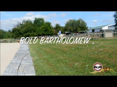 Bold Bartholomew