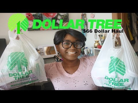 Dollar Tree Haul #171- $66 Dollar Haul of Brand New Finds