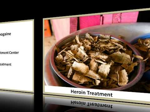 Choose The Best Ibogaine Treatment Centre in Houston TX