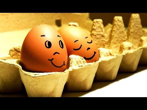 Что будет если кушать по пять, десять яиц каждый день? Как определить свежие яйца или с сюрпризом