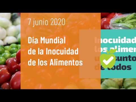 Dia Mundial De La Inocuidad De Los Alimentos 2020 Ops Oms Organizacion Panamericana De La Salud