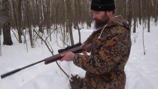 Обзор пневматической винтовки Crosman Venom(Купить винтовки Crosman можно тут: http://www.oxotnika.net/ohota/pnevmatika/vintovki-1/crosman., 2016-02-29T20:28:24.000Z)