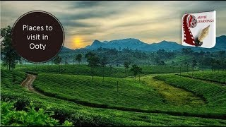OOTY | Food, Shopping, Sightseeing & Tourist Attractions | Tamilnadu tourism, India Travel | thumbnail