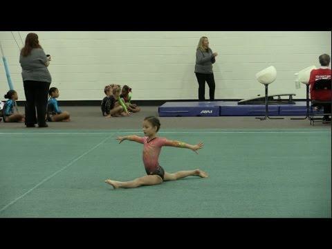 Hayley's First Level 3 Gymnastics Meet | elleoNyaH
