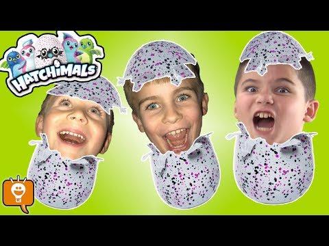NEW HATCHIMALS SURPRISE Egg TOY Fun! New Toy Haul HobbyFamilyTV