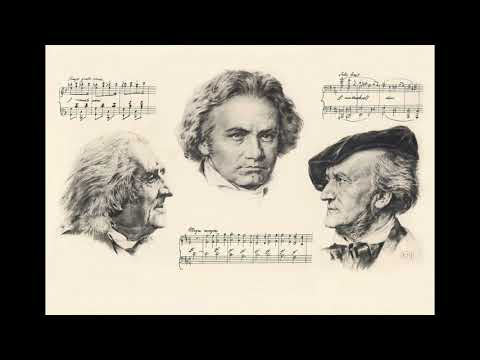 Concert Overture No.1 in D minor - Richard Wagner