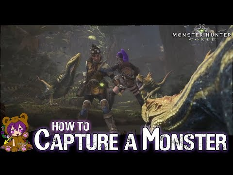Monster Hunter World videos and playthroughs - AyinMaiden