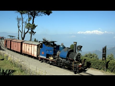 India 2016 - Freight train on the Darjeeling Railway