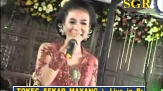 pacobaning-urip-by-campursari-tokek-sekar-mayank-call-628122598859