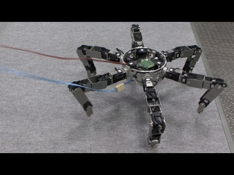 how to build a simple walking robot