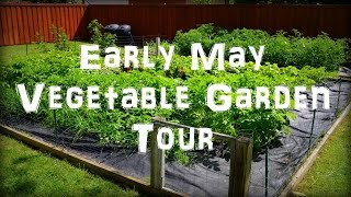 Early May Vegetable Garden Tour & Update