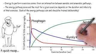 Aerobic and Anaerobic Endurance Prescription and Adaptations