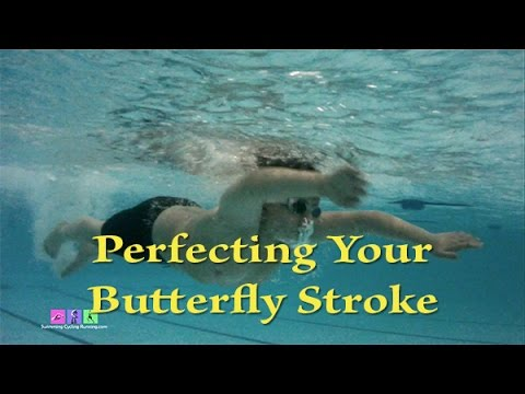 Perfecting Your Butterfly Stroke and Timing - SwimCycleRunCoach