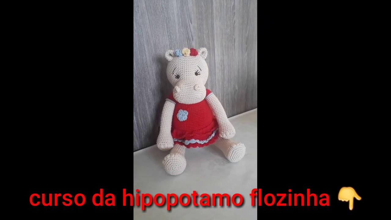 Amigurumi Hipopótamo Rilson Em Crochê – Material e Vídeo   Bigtudo ...   720x1280