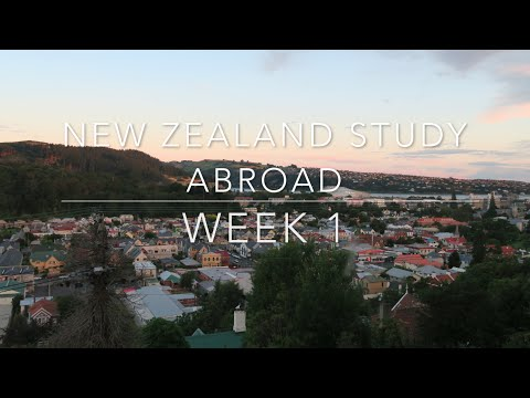 New Zealand Study Abroad : Week 1