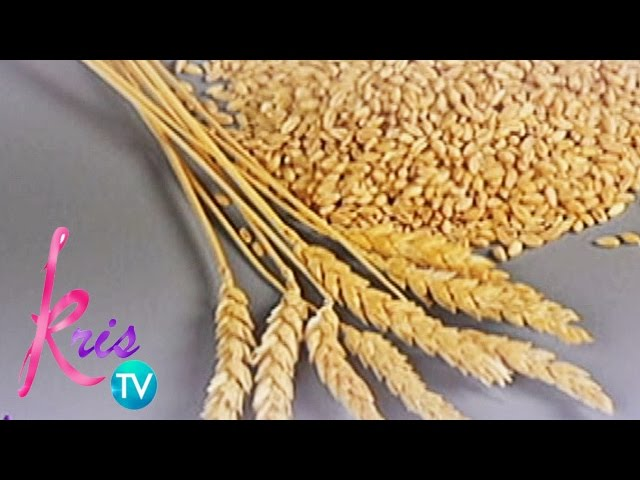 Kris TV: Health benefits of wheat