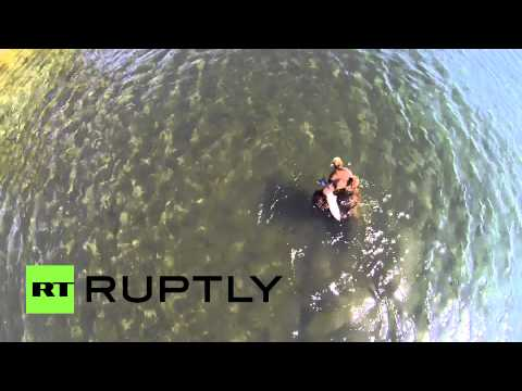 Drone Footage: Bears hunt for food in Kamchatka