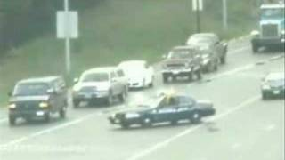 Police Escort Baby Ducks across heavy freeway traffic