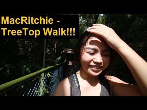 She's afraid of Heights - MacRitchie TreeTop Walk