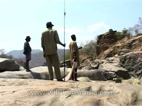 Slippery rocks, rough cliffs and challenging waters of the Kaveri are an angler's Eden!