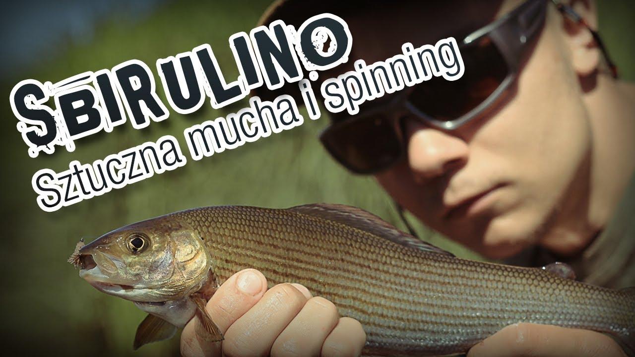 Łowimy na spinning sztucznymi muchami - sbirulino