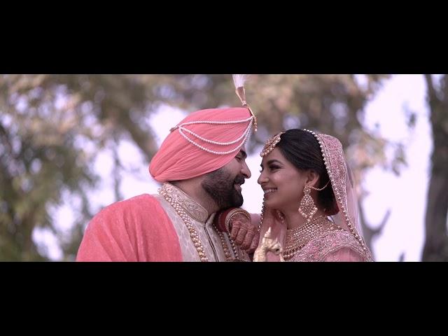 Cinematic Wedding Highlights 2019 /  Harsh / Taran / Narula Production's
