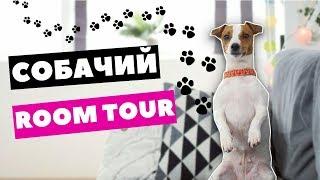 СОБАЧИЙ РУМ ТУР | МОЯ СОБАКА ДЕЛАЕТ ROOM TOUR | Darina Sweet
