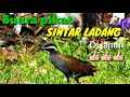 Sintar Ladang Mantap  Mp3 - Mp4 Download