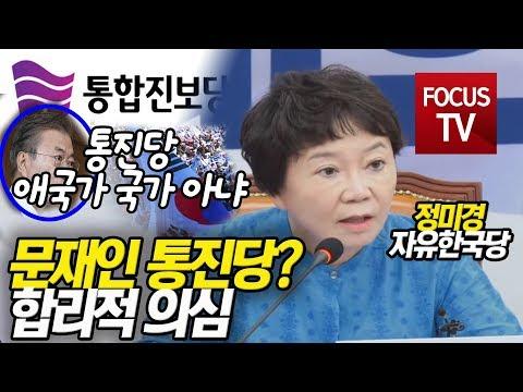 """""""문재인 통진당? 합리적 의심""""  설명하는 정미경"""