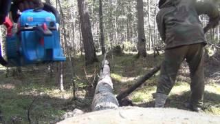Заготівля дров лісі Бензопила Рибалка полювання ліс природа тайга виживання в похід