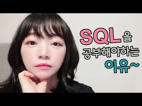 코딩 개발자가 SQL을 공부해야하는 이유, 데이터베이스란, IT기업 취업 팁 (14년차 개발자가 알랴줌)