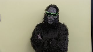 Outtakes - Safety Considerations for Sasquatch