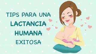 19. Recomendaciones [] Lactancia humana [] Vínculo afectivo bebé-madre [] Más de 300 componentes...