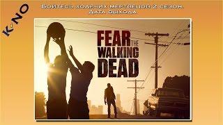 Бойтесь ходячих мертвецов 2 сезон. Дата выхода
