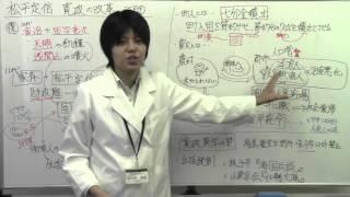 【日本史】江戸9 松平定信 寛政の改革 (ぱんだの日本史、ぱんだの特別...