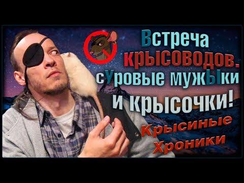 (О) Милые крысы, и брутальные мужчИны! Встреча крысоводов в Москве. (Fancy Rats)