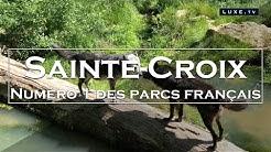 Parc de Sainte-Croix - Nature et animaux sauvages - LUXE.TV