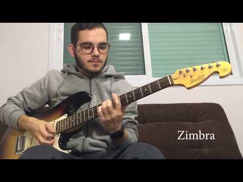 Viva | Zimbra (Cover)