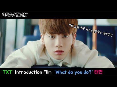 [毽暋靺榏 牍呿灈鞐愲姅 '鞛橃儩旯�'鞚措瀫 瓿茧鞚� 霐半 鞛堧倶鞖�  TXT  : Introduction Film -  What do you do?  韮滍槃