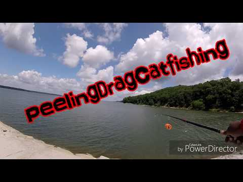 Catching A Couple Hawgs On Ohio River/Bank Fishing For Catfish