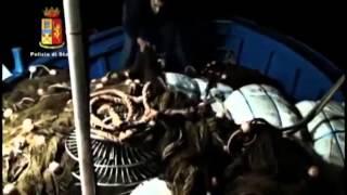Catania La polizia sequestra due tonnellate di marijuana, otto arresti