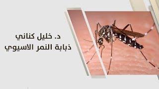 د. خليل كناني - ذبابة النمر الاسيوي