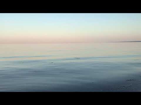 Chant Vibratoire de Guérison en Langage Lumière