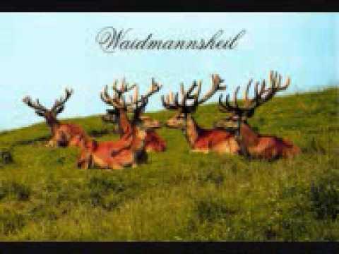 Micky Krause - Waidmannsheil