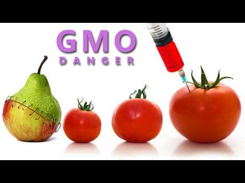 WE ARE EATING A POISON! Here's How to Identify GMO Tomatoes in 2 Easy Steps! by Top Health