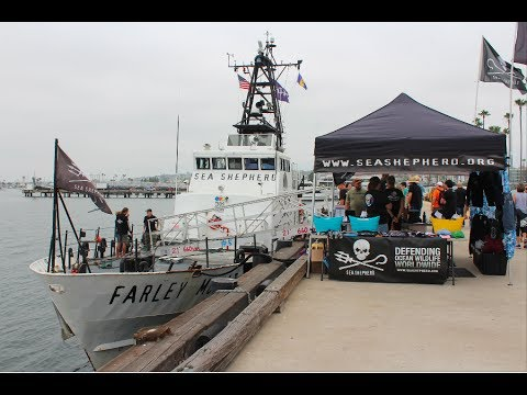 M/V Farley Mowat Full Tour: Sea Shepherd in San Diego 2017