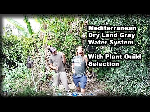 Permaculture Tip of the Day - Mediterranean Dry Land Gray Water System & Plant Selection