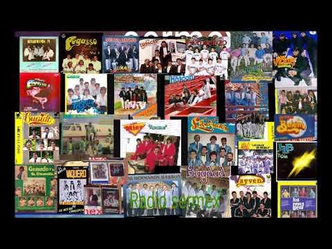 Download Grupos Inmortales 88 vol 2 el baúl de los recuerdos gruperos