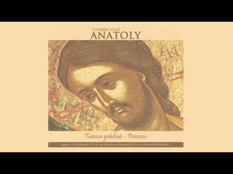 Cvintetul Vocal ANATOLY - Prea Sfânta Maică și Fecioara